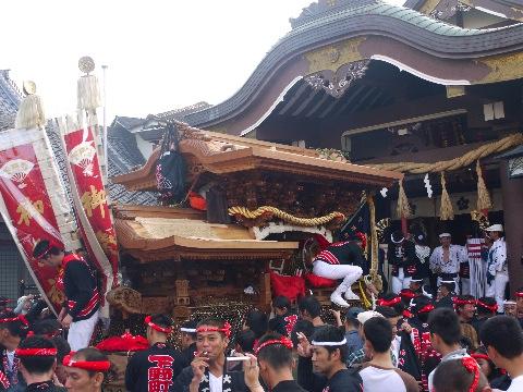 blog祭りP1020277(変換後).jpg